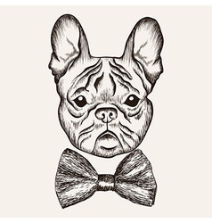 Sketch french bulldog with bow tie hand drawn dog vector