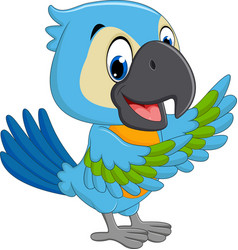 cartoon macaw vector image vector image