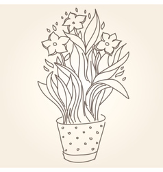 Drawing of beautiful narcissus flower in the pot vector