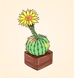 Blooming yellow cactus vector