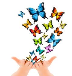 Hands releasing butterflies vector image vector image