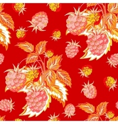 Pattern of red pink raspberry hand painted Fruit vector image