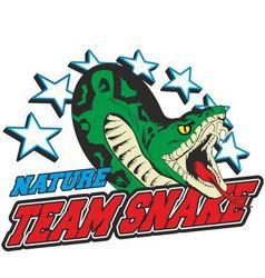 Team snake vector
