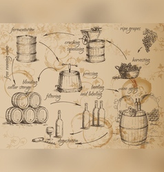 Wine production scheme vector
