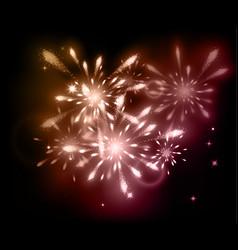 Holiday fireworks on dark background vector