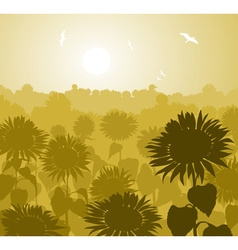 Garden of sunflowers sketch vector