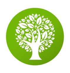 eco tree symbol vector image vector image