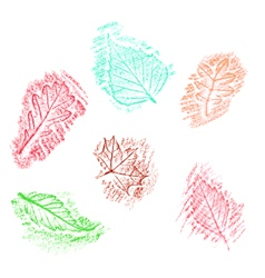 Pencil drawing of leaves vector image