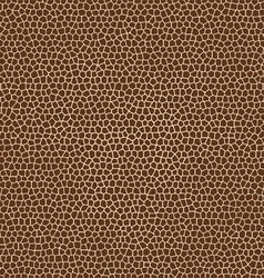 skin textures of giraffe vector image vector image