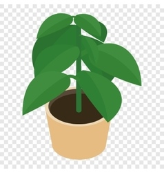 Isometric flower in a pot vector