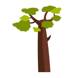 Baobab icon isolated vector