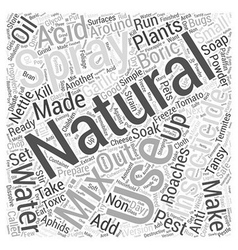 How to prepare natural insecticide word cloud vector