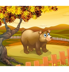 A big bear inside the fence vector image