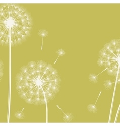 Happy holiday card with dandelions vector image vector image