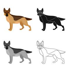 Shepherd single icon in cartoon style dog vector