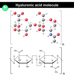 Hyaluronic acid molecule vector