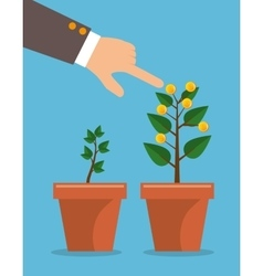 plant growing coins business vector image