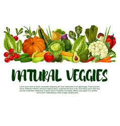 poster of vegetables or veggies harvest vector image vector image