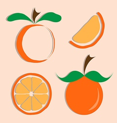 set of orange icon vector image vector image