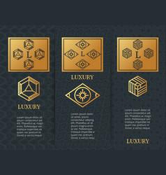 luxury design brochure flyers template with vector image