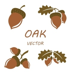 Flat oak icons set vector