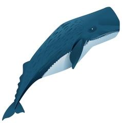 Sperm whale marine mammal vector