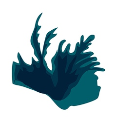 A view of a seaweed vector image