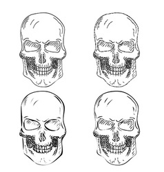 Set of four hand drawn skulls vector