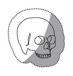 Figure skeleton of the human skull icon vector