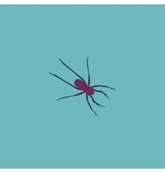 Spider flat icon vector