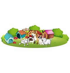 A group of dogs gathering in front of their house vector