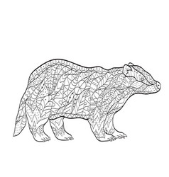 Coloring european badger for adults vector