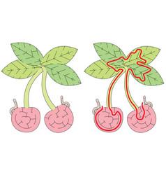 easy cherry maze vector image