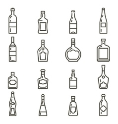 Bottles different types of alcohol icons set vector