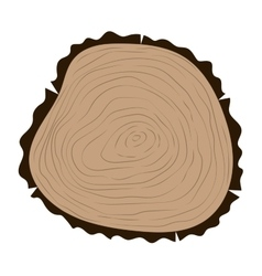 Tree slice isolated vector