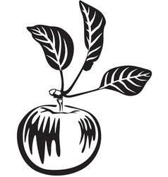 apple black vector image