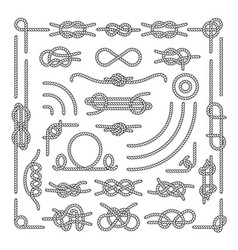 nautical rope knots decorative vintage vector image vector image