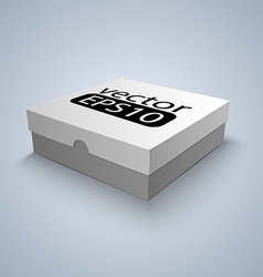 Package white box design vector image