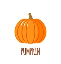 Pumpkin icon in flat style on white background vector