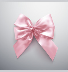 Pink bow and ribbons vector