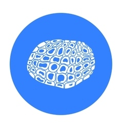 Black truffles icon in black style isolated on vector