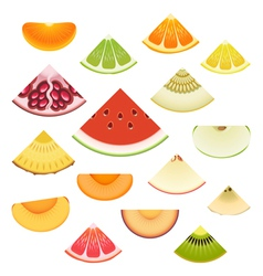 Fruit Wedge Set vector image vector image