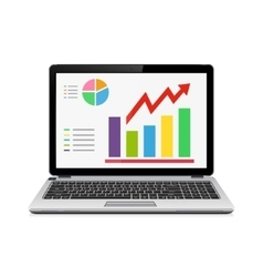 Statistic analysis on modern laptop screen vector image vector image