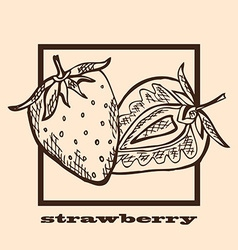 Hand drawn strawberries vector