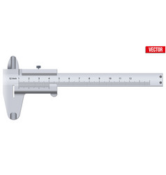 The vernier caliper and scale vector