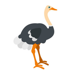 ostrich icon isolated vector image