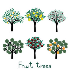Fruit trees set vector