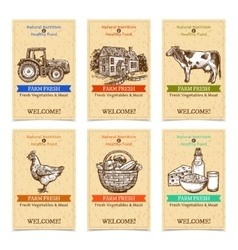 Farm tags banners vector