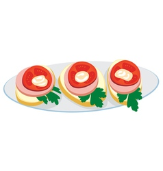 Plate with sandwiches vector