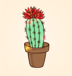Blooming red cactus vector
